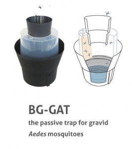 BG-GAT
